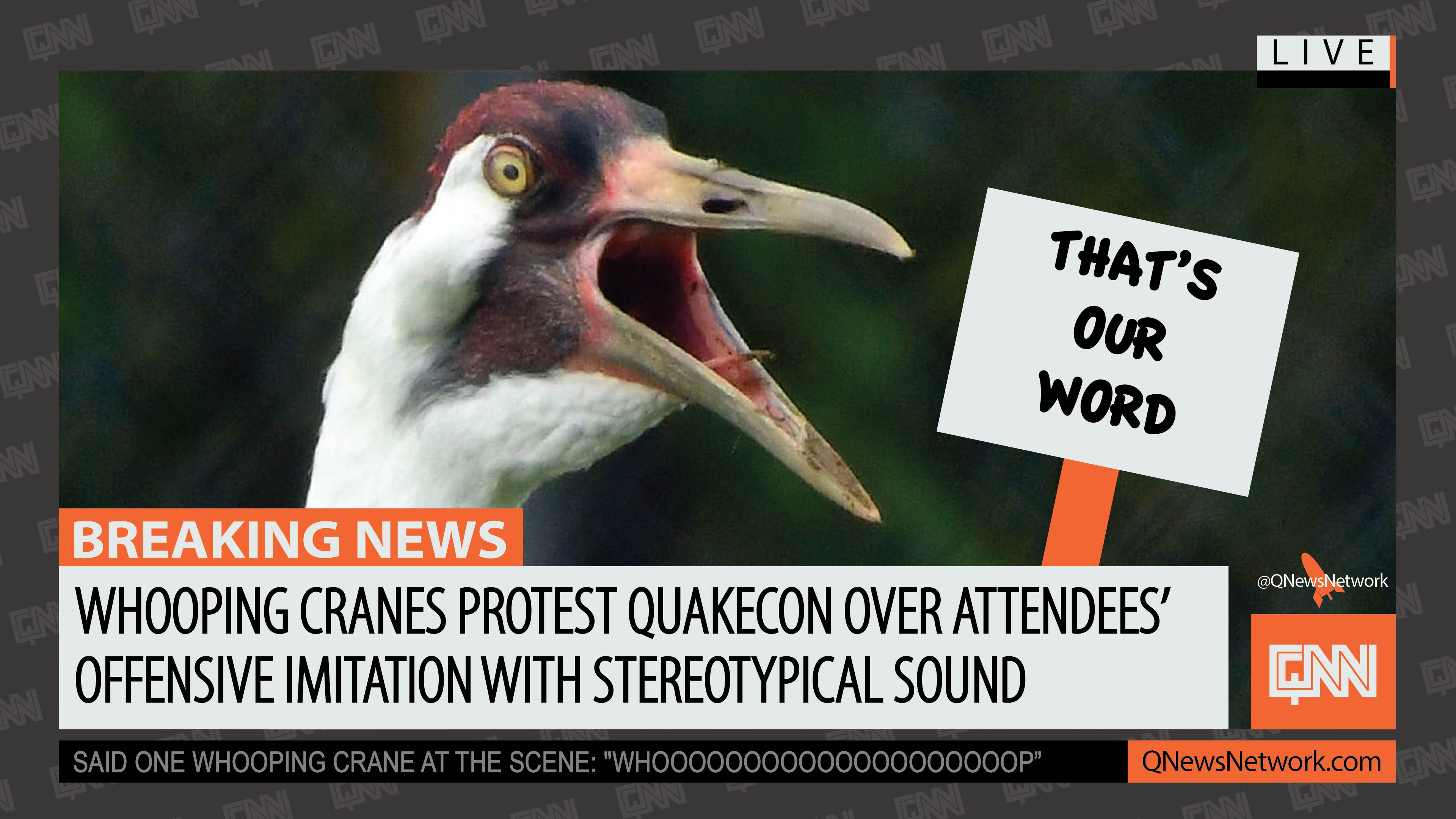 WHOOPING PROTEST-01